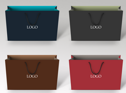 Made with Logo Luxury Printed Paper Shopping Bags with Ribbon Handles