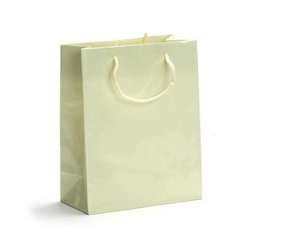 China Recycled Paper Carrier Bags distributor