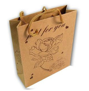 China Brown Kraft Paper Shopping Bags distributor